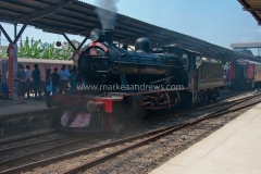 Sri Lanka-5873