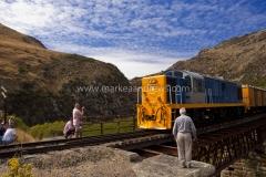 DSC_1320 Taieri Gorge Railway21