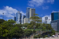 DSC_0716 Sydney3