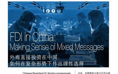The Bridge. FDI in China: Making Sense of Mixed Messages.