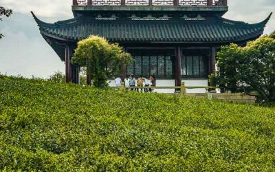 Culture Trip. The 17 Best Day Trips From Shanghai.